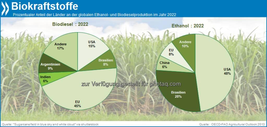 Schön grün? In zehn Jahren werden die EU und die USA fast die Hälfte aller Biokraftstoffe produzieren. Die gesamte Herstellung benötigt dann etwa 29 Prozent der globalen Zuckerrohrproduktion, 15 Prozent aller pflanzlichen Öle und 12 Prozent aller Hülsenfrüchte weltweit.  Mehr unter http://bit.ly/18NUbKD (OECD-FAO Agricultural Outlook 2013, S.46), © OECD (06.10.2013)