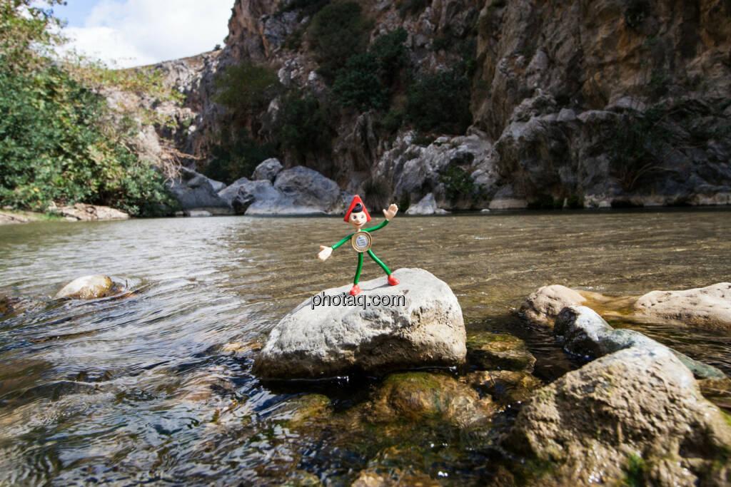 Sparefroh im Urlaub, Wasser, Stein, © Martina Draper (26.10.2013)