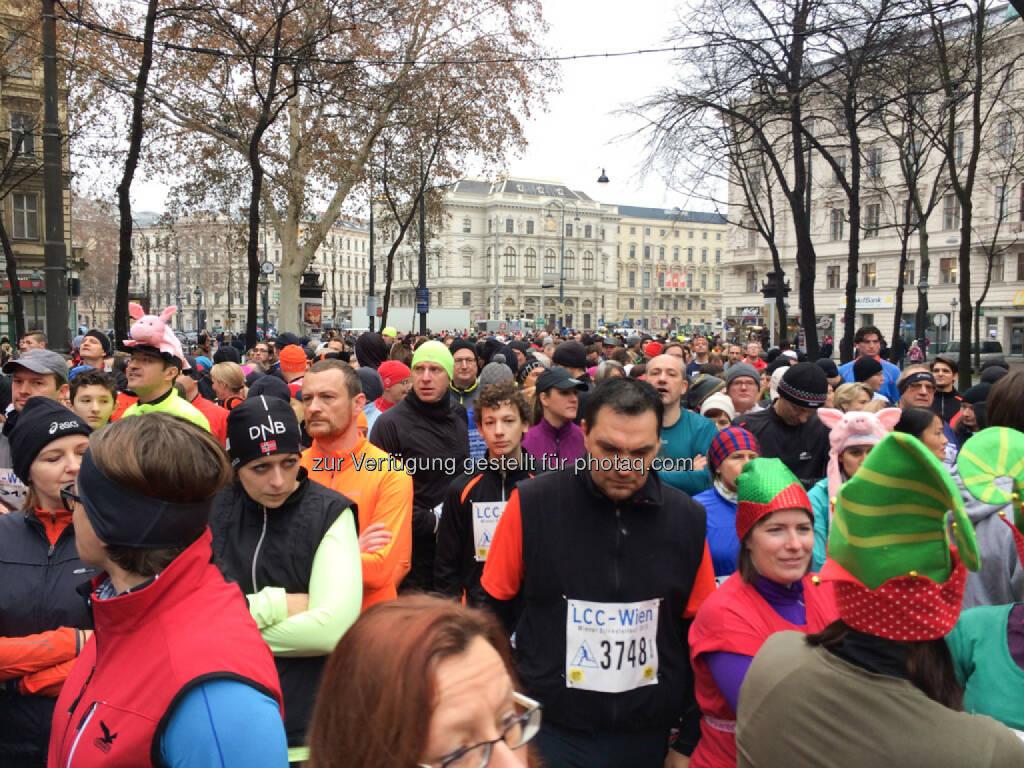 LCC Silvesterlauf 2013, © Martina Draper (31.12.2013)