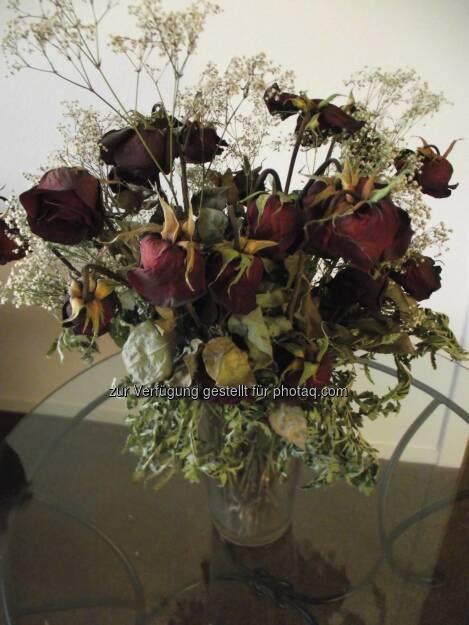 Dead Roses (2011) , © Dietmar Scherf (17.02.2014)