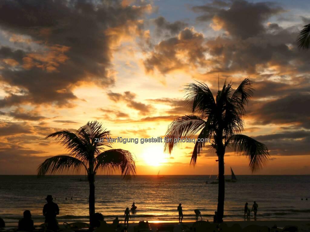 Palm Tree Sunset (2014) , © Dietmar Scherf (17.02.2014)