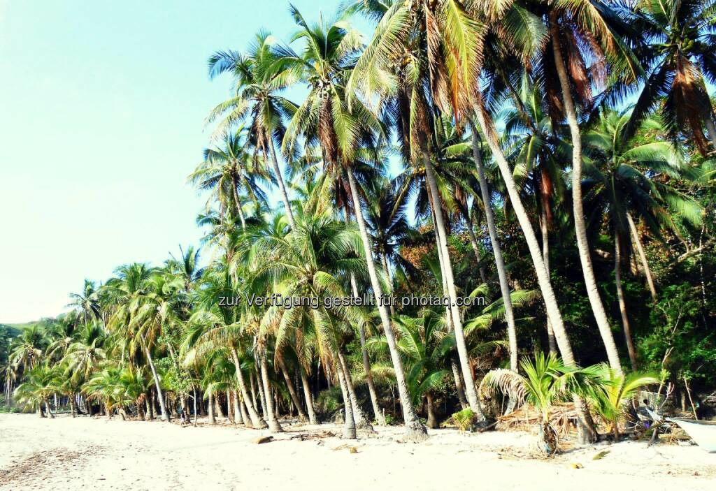 Tropical (2014) , © Dietmar Scherf (17.02.2014)