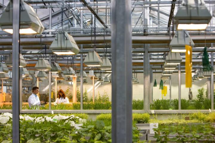 BASF forscht hier an neuen Wirkstoffen für innovative Pflanzenschutzmittel.