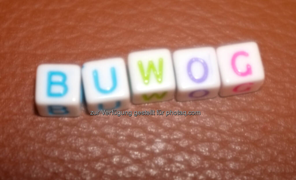 Buwog (30.04.2014)