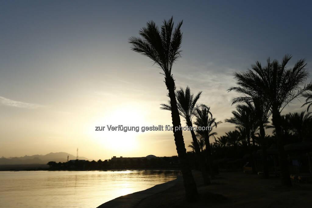 Palm Royal Hotel Soma Bay beach, Red Sea Kitesurf World Cup (28. Mai bis zum 1. Juni ) in Soma Bay (Bild: Hoch Zwei / Juergen Tap) (30.05.2014)