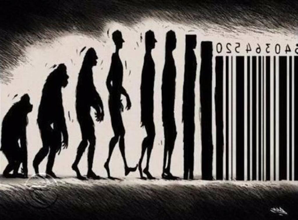 Evolution (30.06.2014)