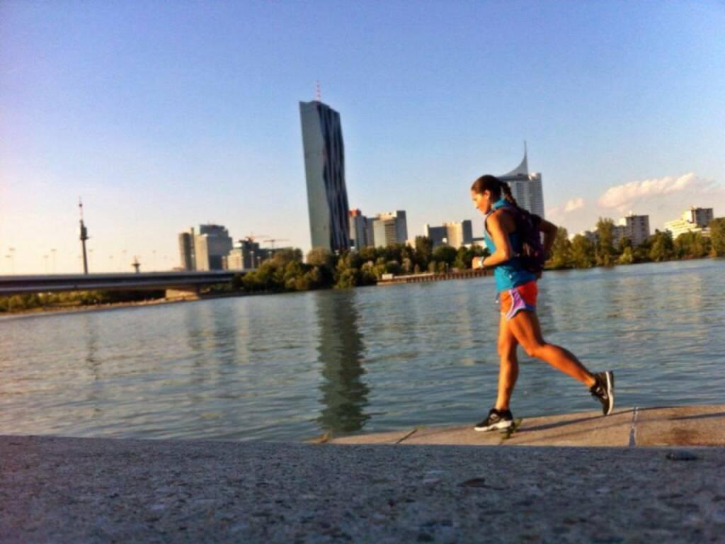 Wien Skyline Donauinsel Donauturm Laufen Monika Kalbacher https://www.facebook.com/kalbacher.monika (12.07.2014)