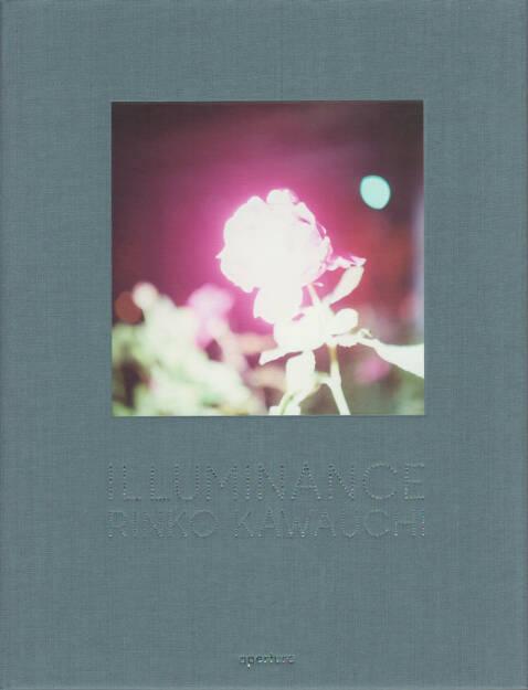Rinko Kawauchi - Illuminance, Aperture, 2011, Cover - http://josefchladek.com/book/rinko_kawauchi_-_illuminance, © (c) josefchladek.com (11.08.2014)