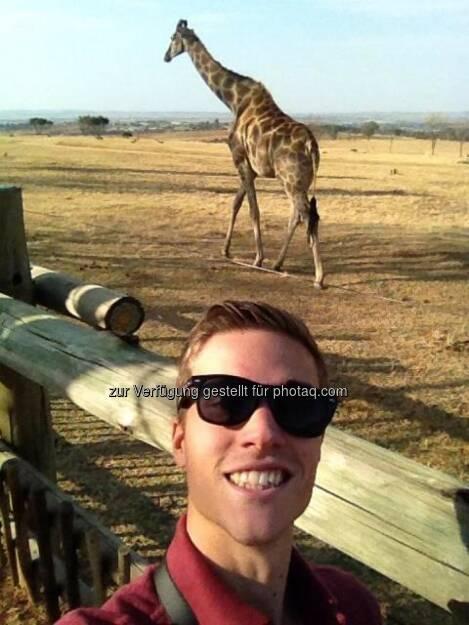 Giraffen: Der erste 'Arbeitstag' hier in Pretoria hat mich mit dem Red Bull Team und den X-Fighter Athleten in einen Safari Park geführt! Unglaublich tolles Erlebnis ..., © Gerald Pollak (20.08.2014)