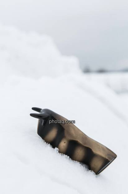 Börsebulle im Schnee (c) Martina Draper (19.01.2013)