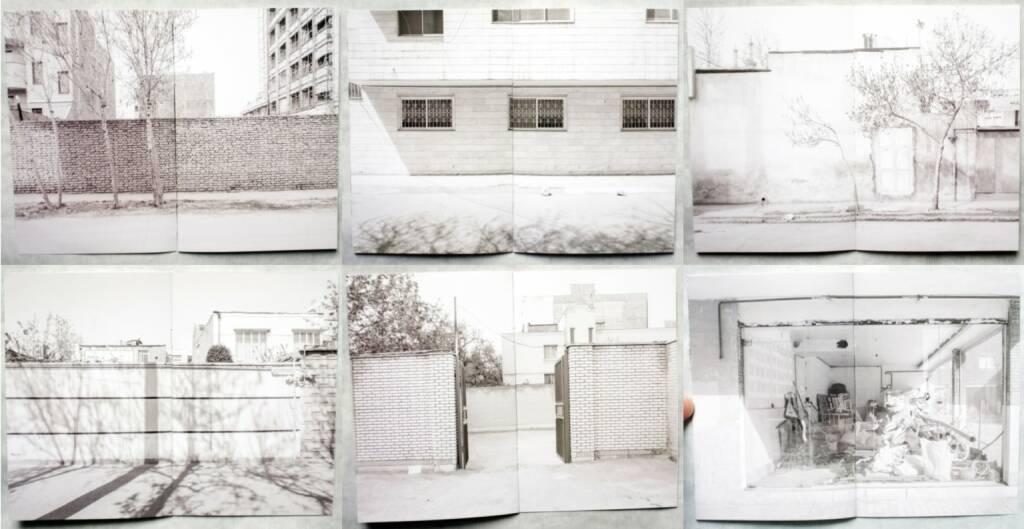 Alireza Malekian - Origin, The Velvet Cell, 2014, Beispielseiten, sample spreads - http://josefchladek.com/book/alireza_malekian_-_origin, © (c) josefchladek.com (05.09.2014)