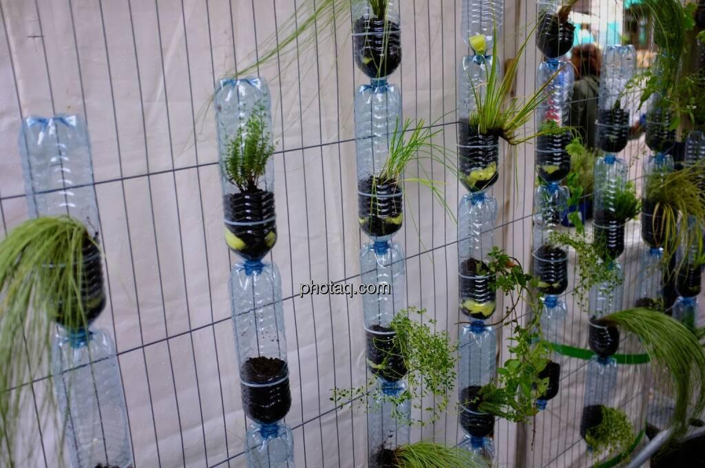 Pflanzen, Plastikflaschen, Streetlife Festival 2014, © photaq.com (14.09.2014)