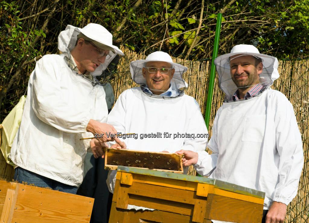Die Vorstände der HDI Versicherung AG in Schutzkleidung mit den Bienen und dem Sprecher der StadtImker: HDI Versicherung AG: 2 Parkplätze für den Schutz von über 100.000 Bienen in Wien, © Aussender (09.10.2014)