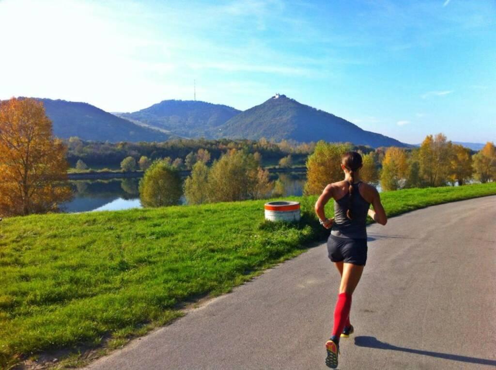Ausblick: Kahlenberg im Blick, Donauinsel, Monika Kalbacher trainiert für den NY-Marathon  https://www.facebook.com/kalbacher.monika, © Diverse  (20.10.2014)