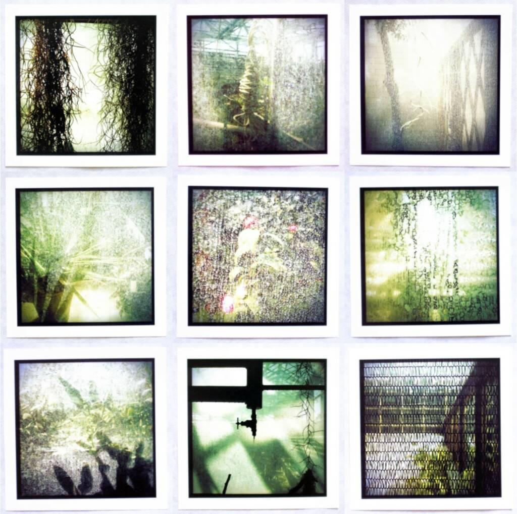 Gera Artemova - botanic garden, Self published 2014, Beispielseiten, sample spreads - http://josefchladek.com/book/gera_artemova_-_botanic_garden, © (c) josefchladek.com (26.11.2014)