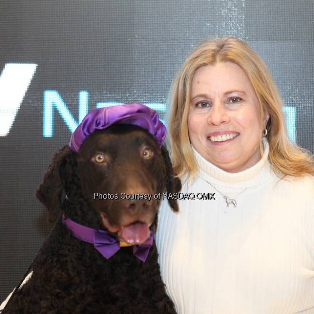 Hund: Woof woof! The 139th Annual Westminster Dog Show rang the @Nasdaq Closing Bell! #dogs #puppies #dog #dogsofinstagram #pup #westminsterdogshow @westminsterkennelclub  Source: http://facebook.com/NASDAQ (08.02.2015)