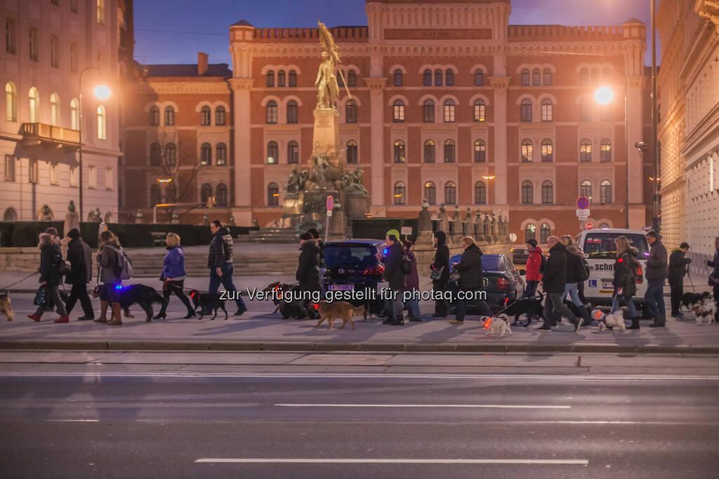Purina PetCare Austria: Sicherheit und Spaß beim ersten Beneful Night Walk für Hund & Halter, © Purina PetCare (02.03.2015)