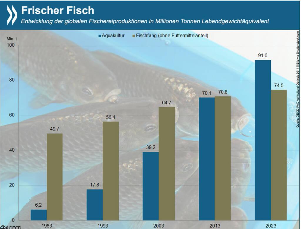 Fisch gepflückt: Seit den 80er Jahren liefert die Aquakultur nennenswerte Mengen von Fisch und Meeresfrüchten. Inzwischen stammt die Hälfte des Speisefischs weltweit aus der Zucht. Die Branche wächst schneller als die meisten anderen Nahrungsmittelsektoren. Mehr Infos zur aktuellen Fischereiproduktion und Projektionen für die kommenden Jahre liefert: http://bit.ly/1Dyq3BB (S.193f.) #Freitag #Fischtag, © OECD (02.03.2015)