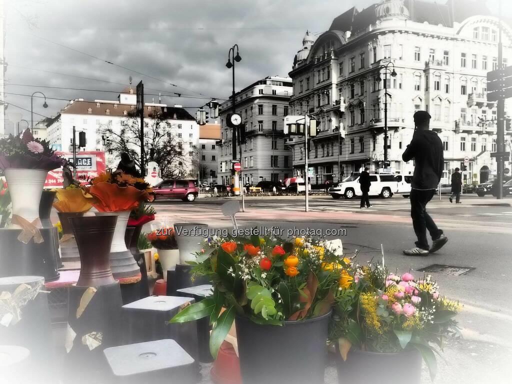 Wien , © Dirk Herrmann (08.03.2015)