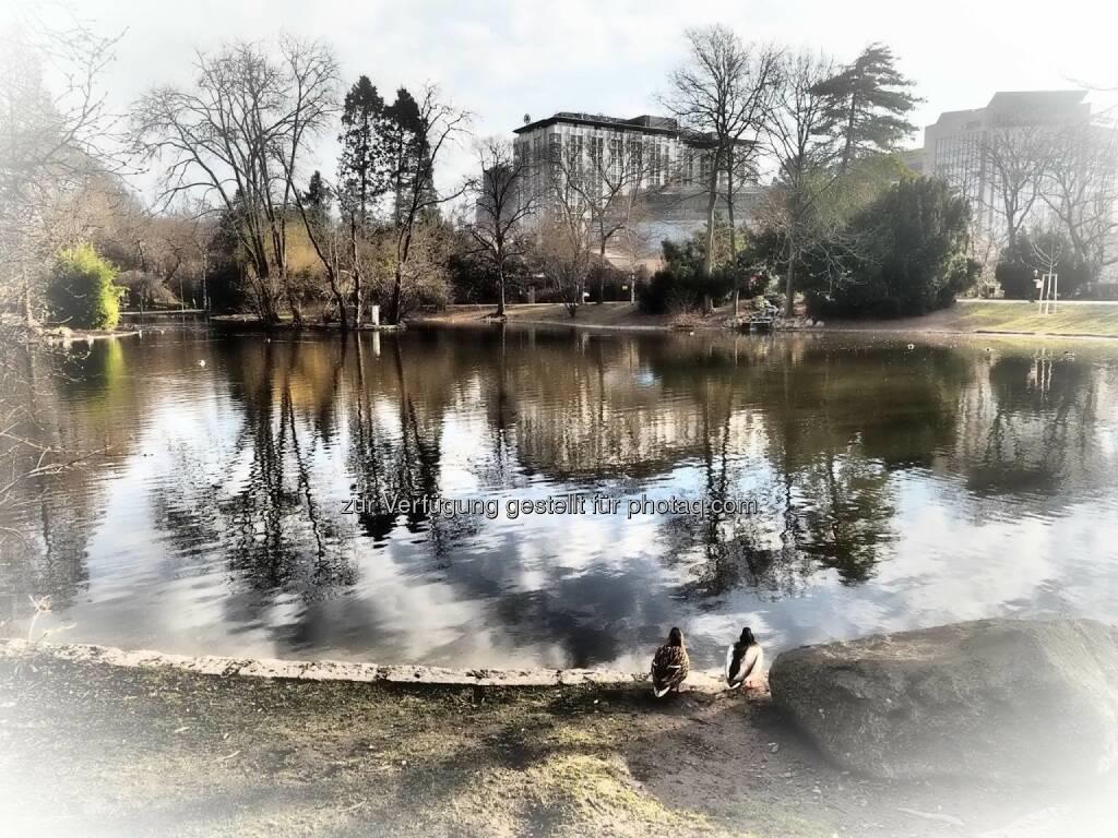 Wien Stadtpark, © Dirk Herrmann (08.03.2015)
