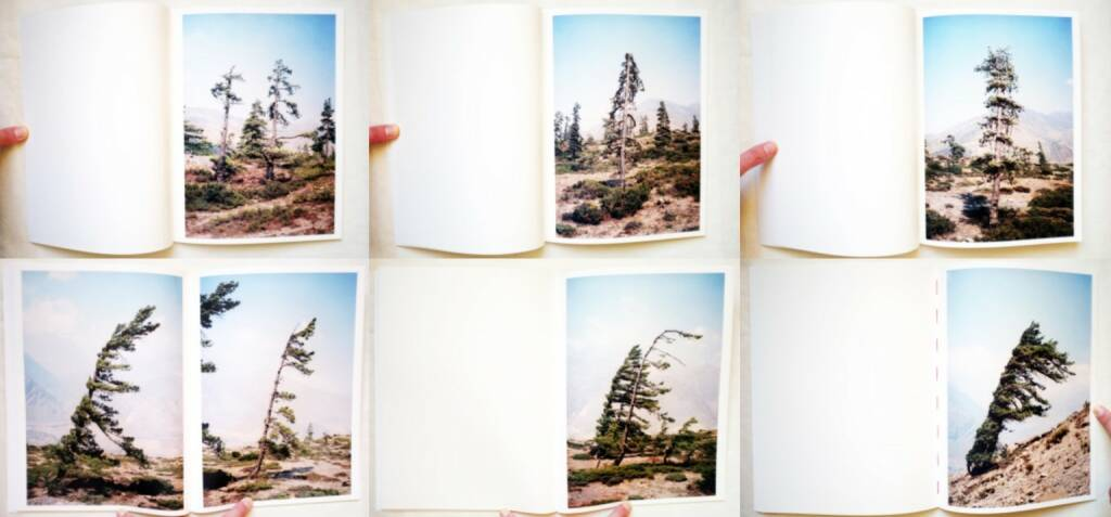 Vincent Delbrouck - Some Windy Trees, Self published/Wilderness 2013, Beispielseiten, sample spreads - http://josefchladek.com/book/vincent_delbrouck_-_some_windy_trees, © (c) josefchladek.com (29.03.2015)