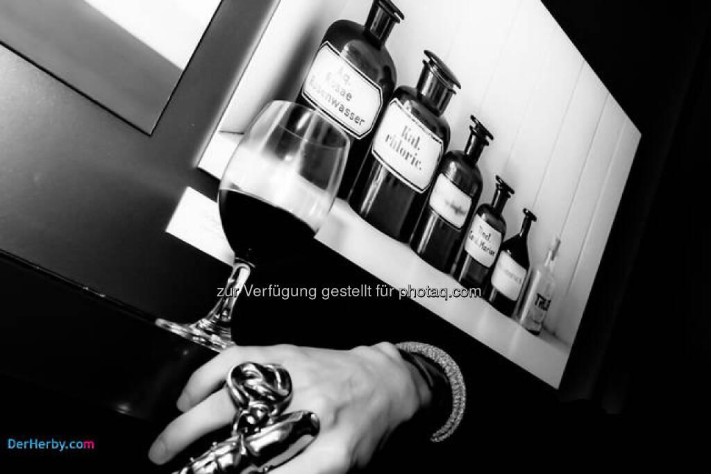 Blende, Die Erste - Ausstellungseröffnung von Nina Romana, © Herbert Gmoser (24.02.2013)