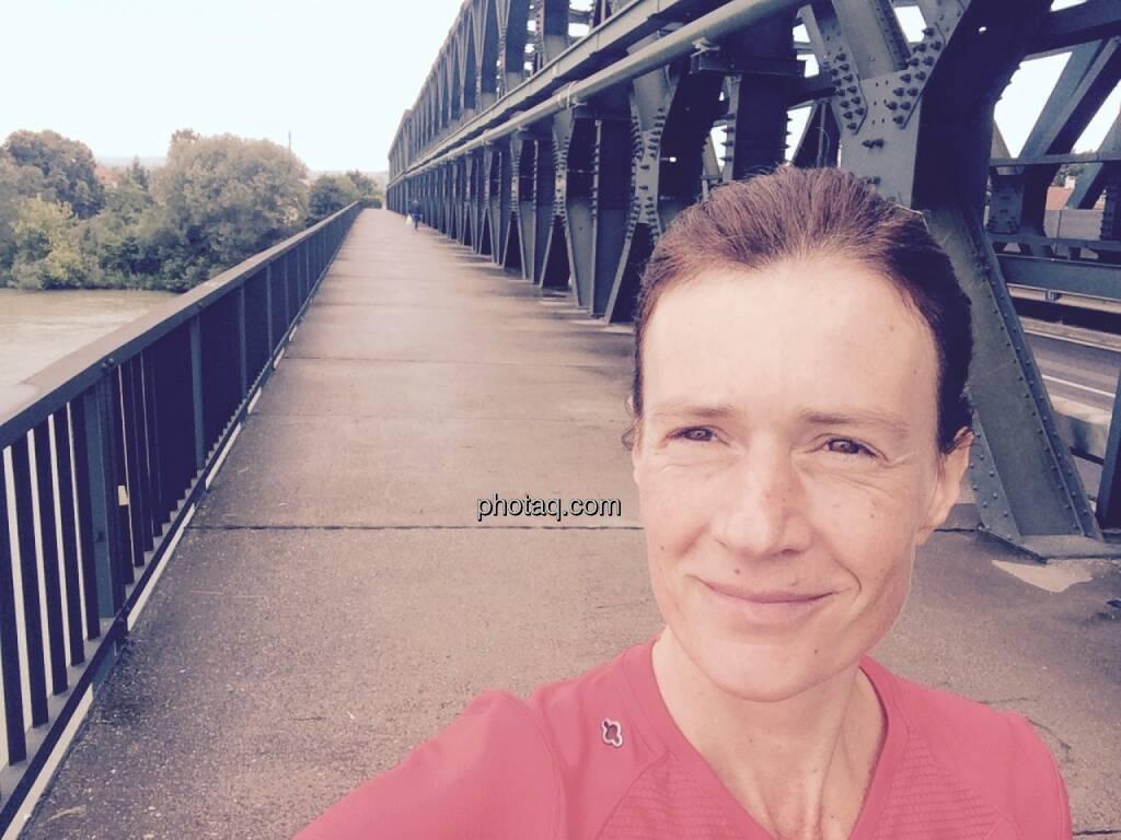Eisenbahnbrücke Tulln, © Martina Draper (19.06.2015)
