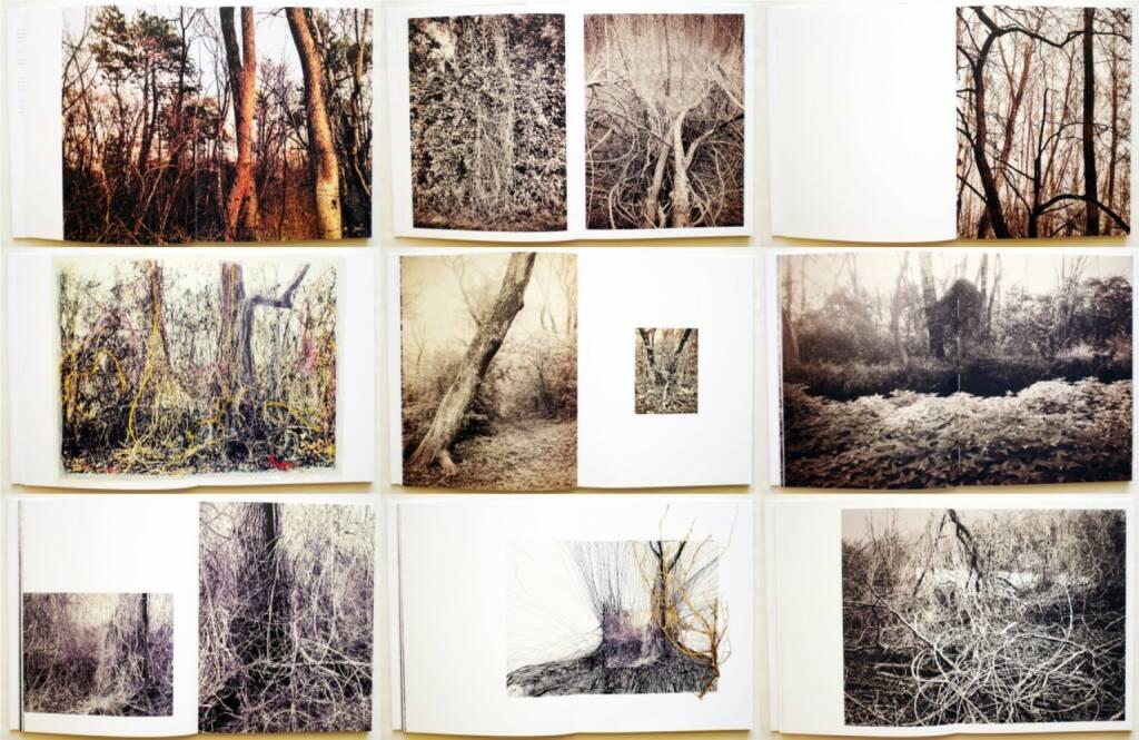 Regina Anzenberger - Roots & Bonds, AnzenbergerEdition 2015, Beispielseiten, sample spreads - http://josefchladek.com/book/regina_anzenberger_-_roots_bonds, © (c) josefchladek.com (13.07.2015)