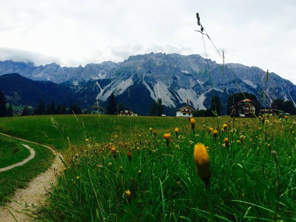 Dachstein, Berg, © Martina Draper (02.08.2015)