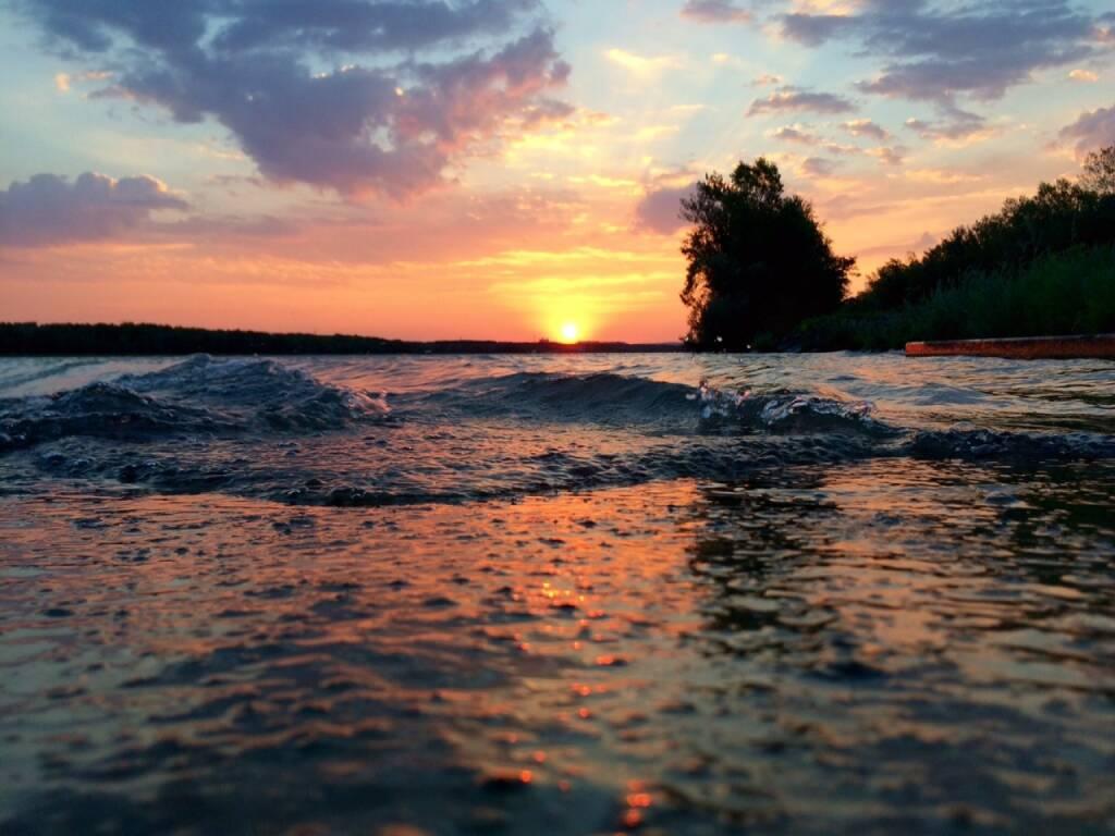 Sonnenaufgang, Wasser, Wellen, Donau, © Martina Draper (05.08.2015)