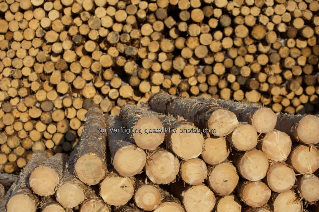 Schweighofer Gruppe kauft Sägewerk der Klausner Gruppe in Sachsen : Standort im Osten Deutschlands ermöglicht Markterweiterung für Holzindustrie Schweighofer :© Schweighofer, © Aussendung (07.08.2015)