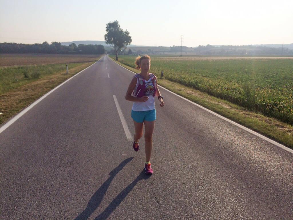 on the road zwischen Leobendorf und Spillern, © Martina Draper (08.08.2015)