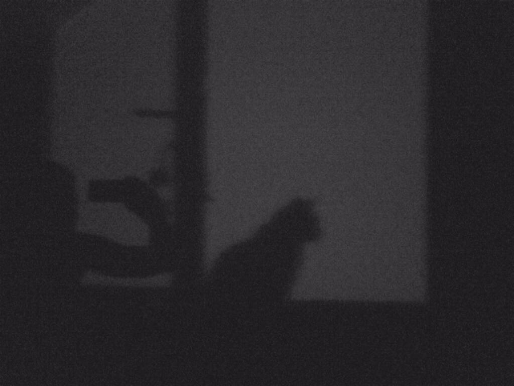 Schatten, Katze, © Martina Draper (11.08.2015)