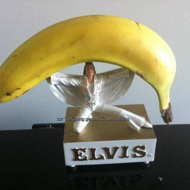 Bananing Elvis https://www.facebook.com/bananingofficial (22.03.2013)