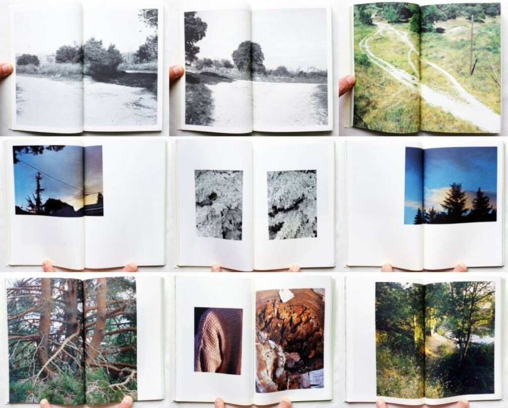 Raúl Hernández - Riverbed, BlackMountain Books 2015, Beispielseiten, sample spreads - http://josefchladek.com/book/raul_hernandez_-_riverbed, © (c) josefchladek.com (06.10.2015)