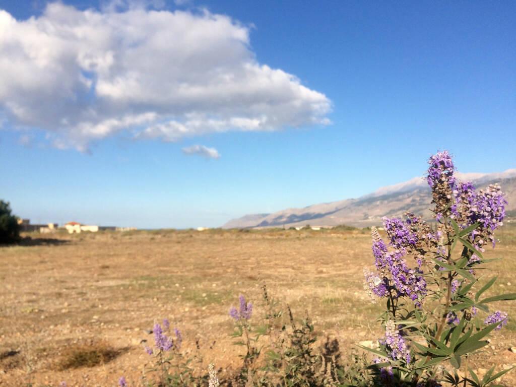 Kreta, Griechenland, © Martina Draper (14.10.2015)