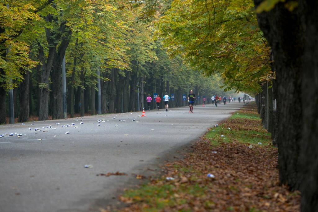 LCC Herbstmarathon 2015, Prater Hauptallee, © Martina Draper (19.10.2015)