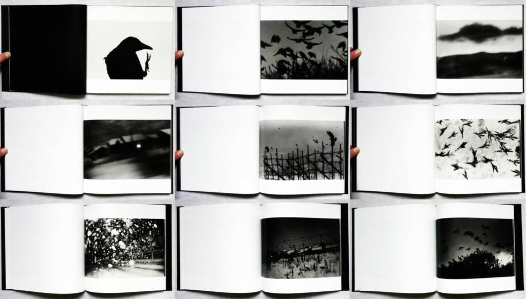 Masahisa Fukase - Karasu (The Solitude of Ravens), Rat Hole gallery 2008, Beispielseiten, sample spreads -  http://josefchladek.com/book/masahisa_fukase_-_karasu_the_solitude_of_ravens, © (c) josefchladek.com (08.11.2015)