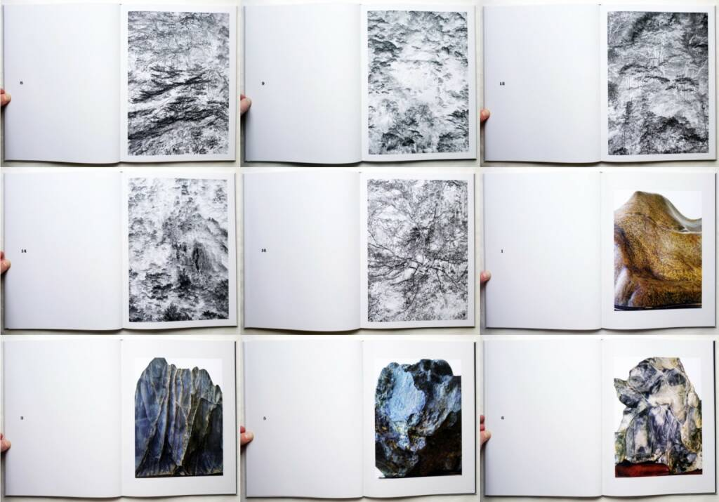 Thomas Neumann - The Japanese Series, Distanz 2015, Beispielseiten, sample spreads - http://josefchladek.com/book/thomas_neumann_-_the_japanese_series, © (c) josefchladek.com (19.11.2015)