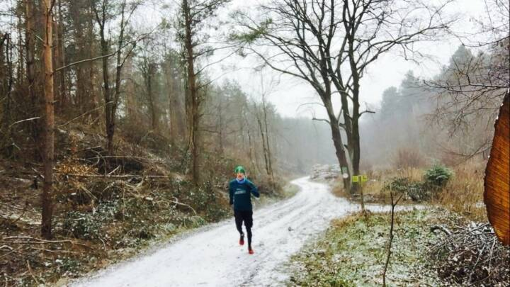 1.1.: 12k-Neujahrsrunde im Wienerwald
