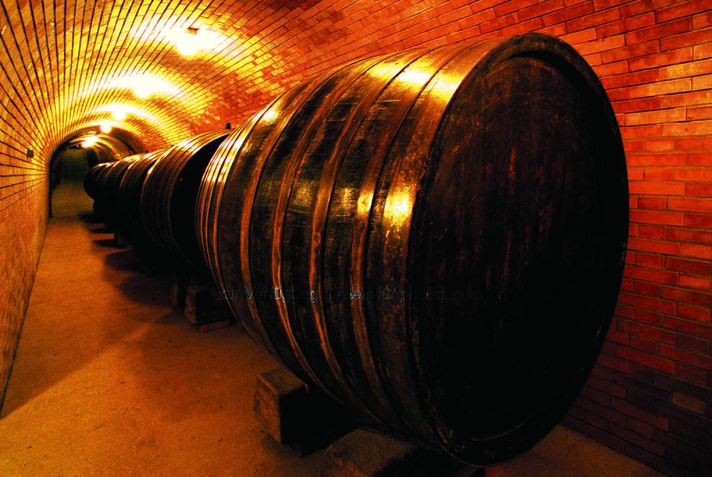 Weingut Baumgartner, Weinviertel : Der Grüne Veltliner Rosenprinzessin wurde beim Internationalen Weinpreis Mundus Vini in Deutschland mit einer Goldmedaille ausgezeichnet : Fotocredit: Ing. W. Baumgartner GmbH&CO KG, © Aussendung (21.03.2016)