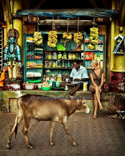 Bulle, Indien by http://www.florap.com  (13.04.2013)