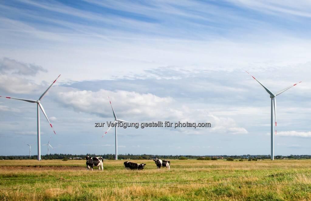 Direct-Drive-Windturbinen : Siemens liefert drei Stück für den Windpark Naundorf, der zwischen Dresden und Leipzig liegt : Die Transformatoren für die neuen Anlagen werden in Weiz gefertigt : (c) Siemens , © Aussendung (29.06.2016)