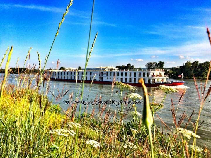 Donau, Schiff