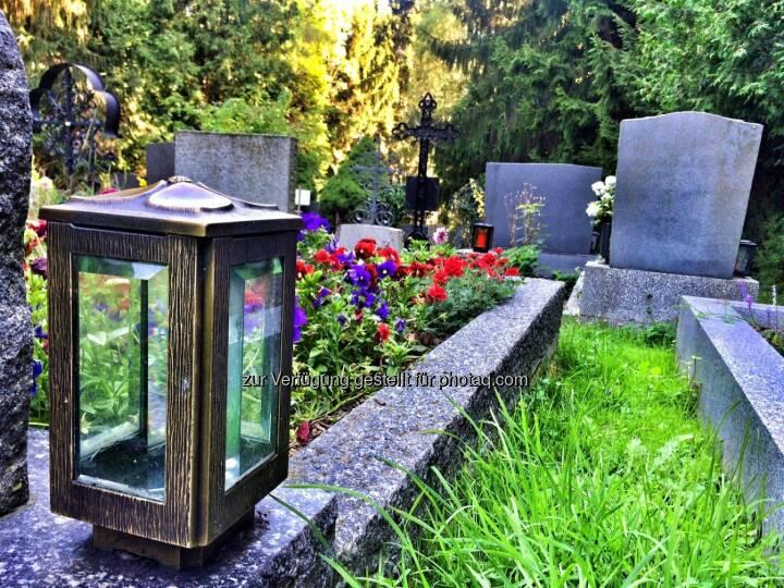 Friedhof Höflein mitten im Wald