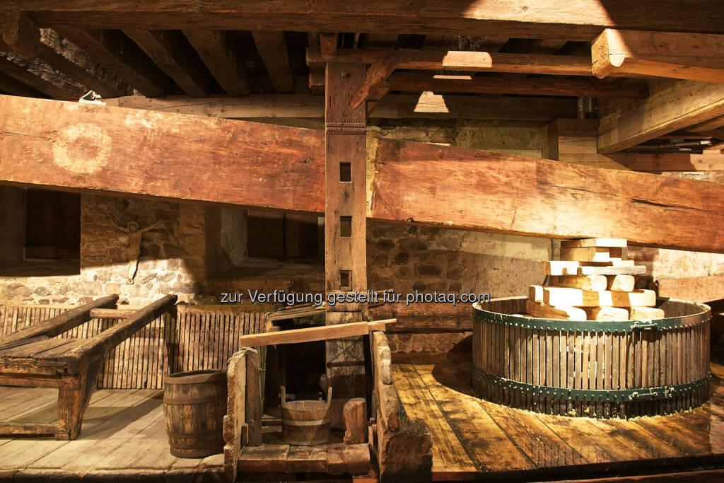 Weltgrößte Baumpresse (Nikolaihof, Wachau) : Weltgrößte Baumpresse wieder in Betrieb : Mithilfe der historischen Anlage wird der sogenannte Baumpresse-Wein gekeltert : Fotocredit: Nikolaihof Wachau/Lun, © Aussender (18.10.2016)