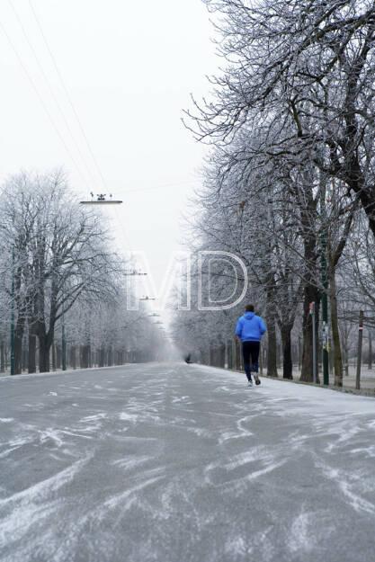 Hauptallee im Winter, Wien, © Martina Draper (15.12.2012)