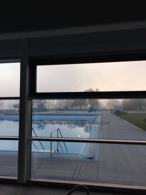 Schwimmbecken (11.11.2016)