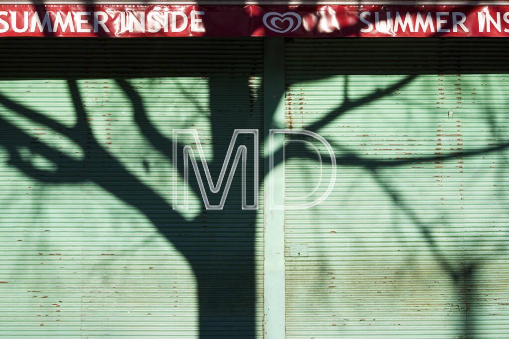 Prater, Schatten, Wien, © Martina Draper (15.12.2012)