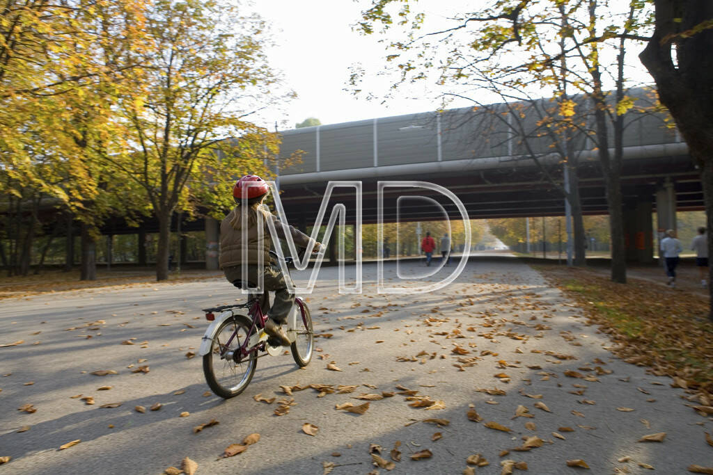Hauptallee, Tangente, Wien, © Martina Draper (15.12.2012)